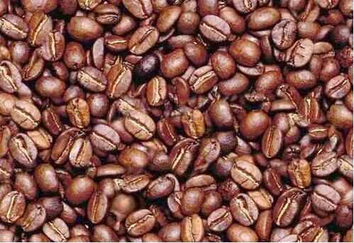 face-in-beans.jpg