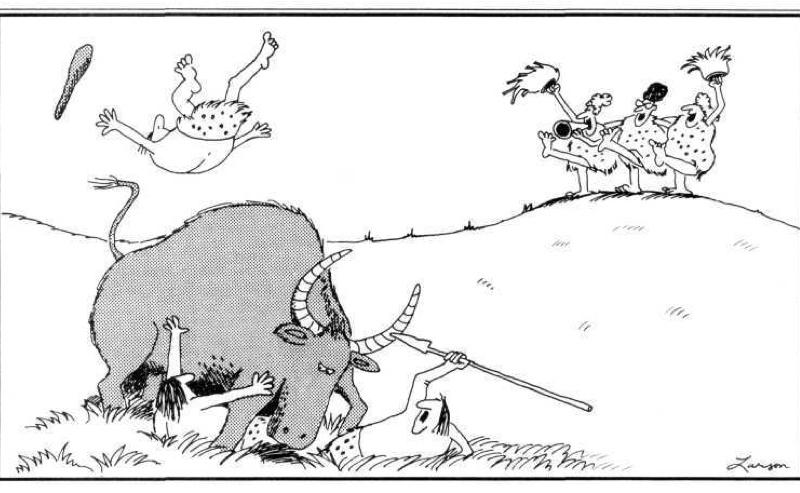 Evolution creation controversy essays