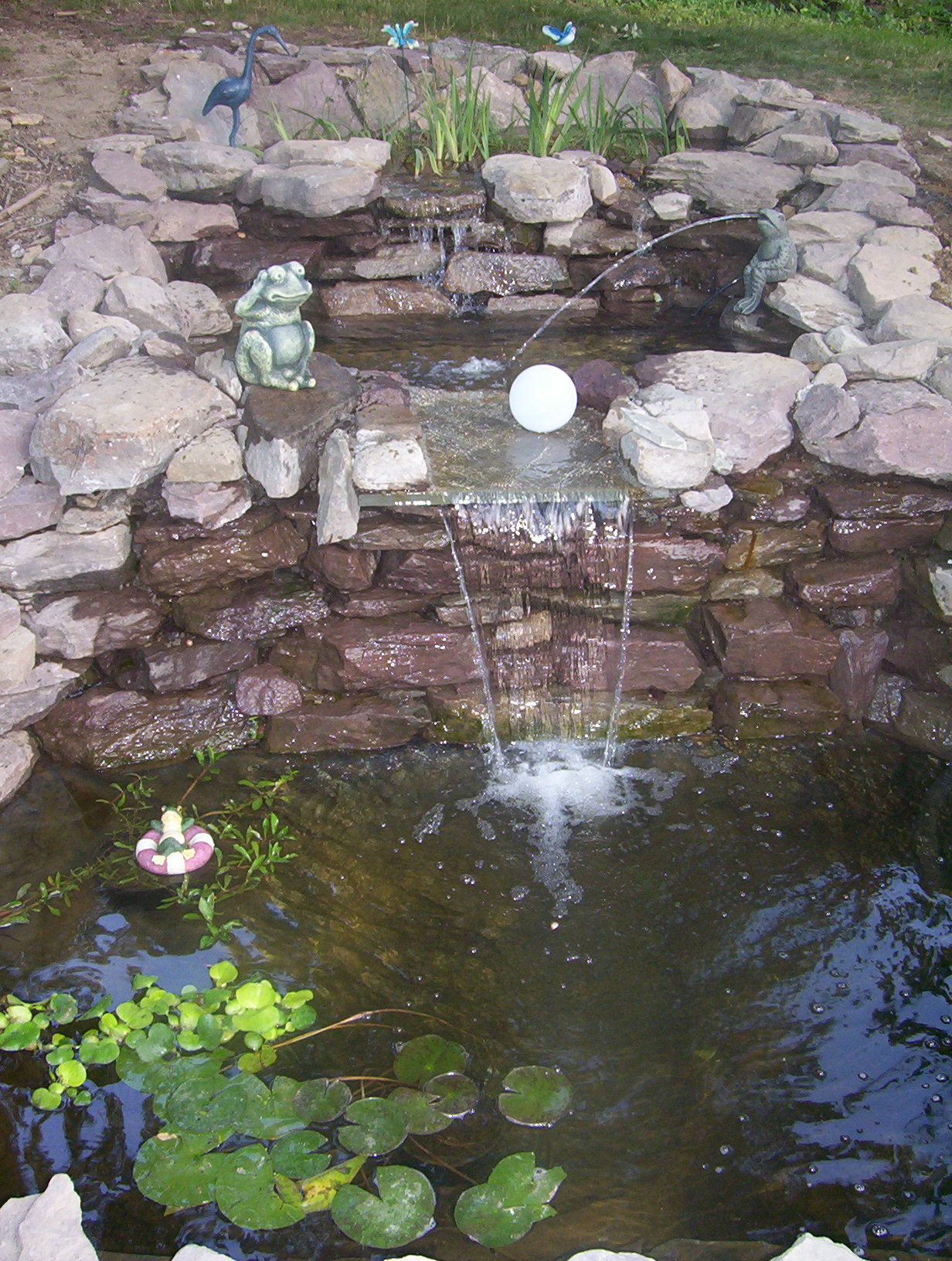 Pin landscaping plants on pinterest for Fish pond structure