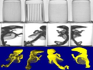 Research Project Page of German Cheung: 3D Video Reconstruction of